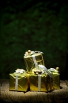 """Gift Box On Old Wooden With Green Bokeh Background"" by KROMKRATHOG"